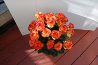 Luxury Happy Birthday Orange roses!!!!
