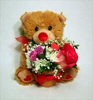 Valentine's Teddy Bear