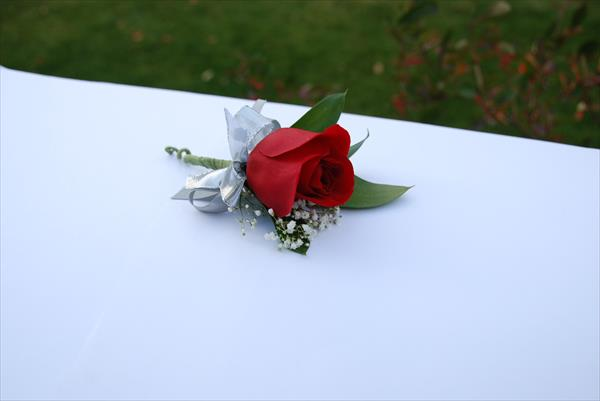 Red rose boutonnier